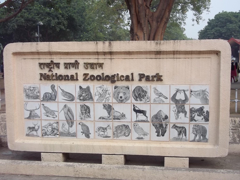 Picnic spots for kids in Delhi
